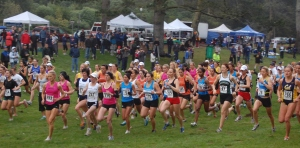 run-cross-country_start3