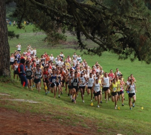 run-cross-country_start4